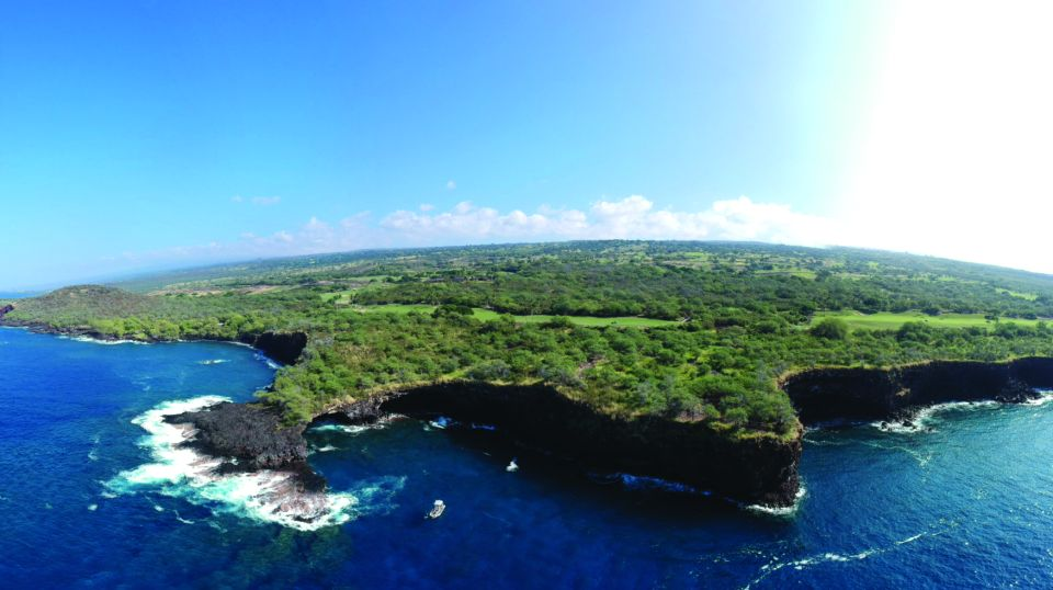 Big Island Whale Watching & Dolphin Tours