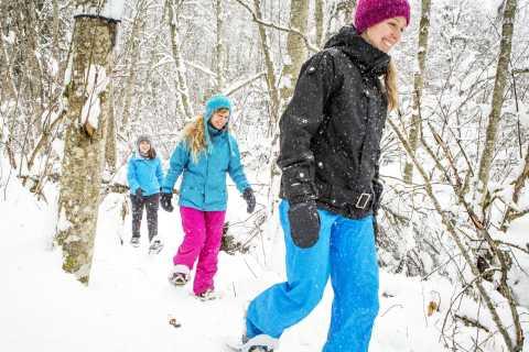 Quebec City: Jacques-Cartier National Park Snowshoeing Tour