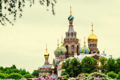 St Petersburg: Private City Sightseeing Tour