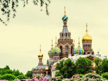 St. Petersburg: Private Sightseeing-Tour