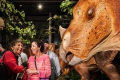 Ottawa: Admissão ao Museu Canadense da Natureza