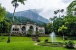 Rio: Botanical Garden, Tijuca Forest, and Parque Lage Tour