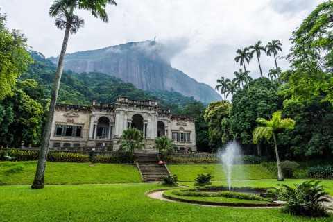 Rio: Botanical Garden, Tijuca Forest og Parque Lage Tour
