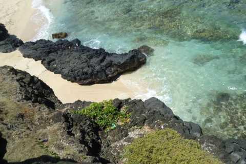 Mauritius: Vanilla Park and Wild Beaches Tour