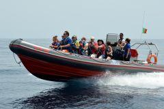 Albufeira: Passeio de Barco Golfinhos e Cavernas Marítimas