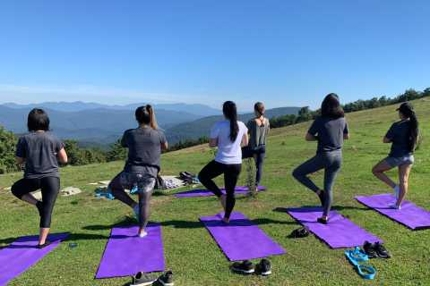 Asheville: Yoga on a Mountain Hike