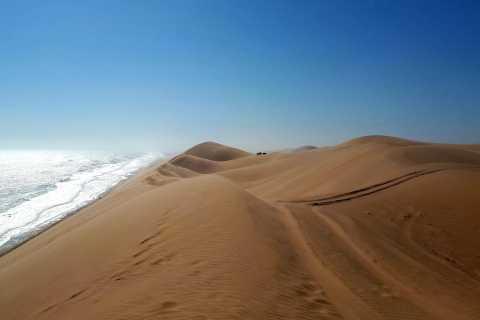 Swakopmund: Half-Day Sandwich Harbour 4x4 Dune Tour