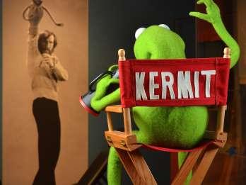 Atlanta: Zentrum für Puppenspielkunst, Worlds of Puppetry Museum