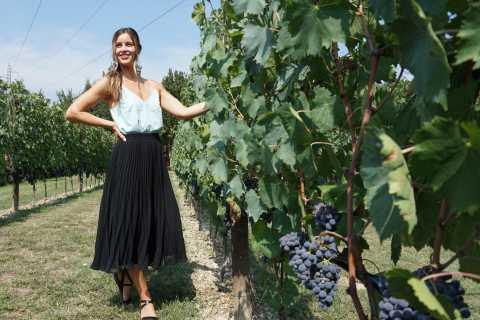 Da Firenze: tour del vino del Chianti di mezza giornata per piccoli gruppi