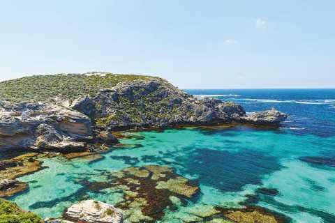 De Perth ou Fremantle: Balsa da Ilha Rottnest e excursão de ônibus