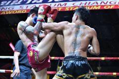 Chiang Mai: Ingresso para o Thapae Boxing Stadium