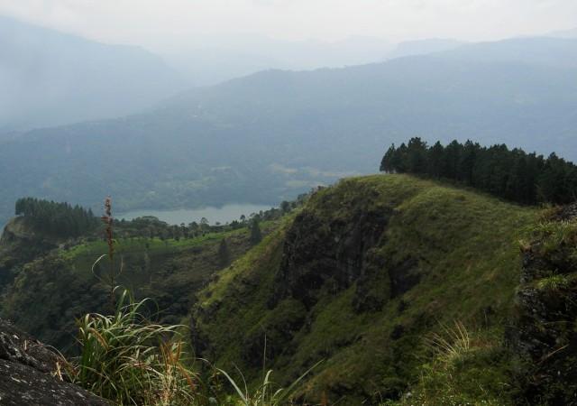 Peacock Hill Trek