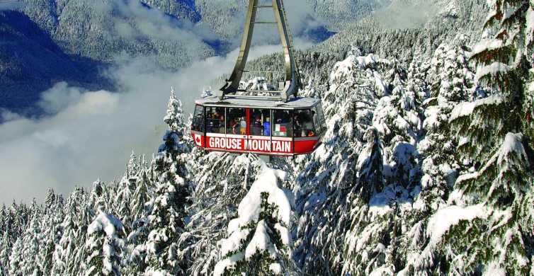 Vancouver: Grouse Mountain Admission Ticket