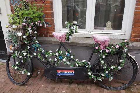 Amsterdam: Private Radtour auf Deutsch