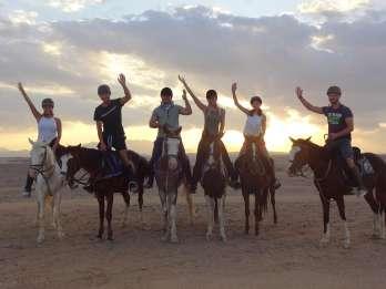 Hurghada: Strand- und Wüstentour auf dem Pferd