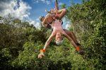 From Cancun or Riviera Maya: Selvatica Jungle Zip Line Tour