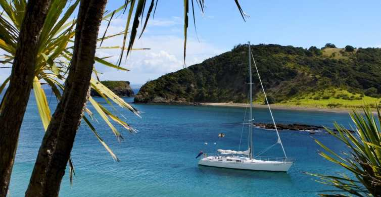 Bay of Islands: Awesome Day Sailing Tour with Island Stop