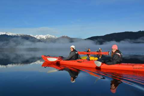Franz Josef: 3-Hour Kayak Tour on Lake Mapourika