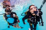 Hurghada: Full-Day Diving Tour with Lunch & Two Dive Sites