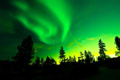 Rovaniemi: Northern Lights Hunt and Arctic Circle