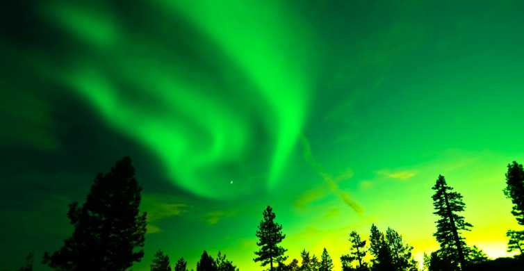 Rovaniemi: Caçada à Aurora Boreal e Círculo Polar Ártico