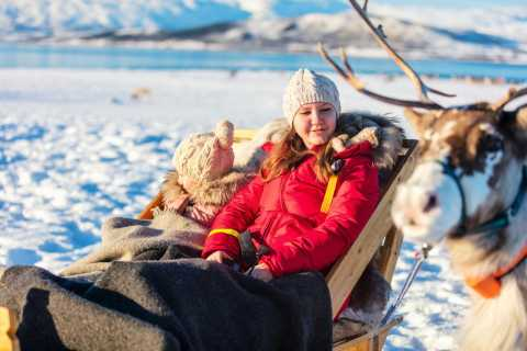 Rovaniemi: Traditional Reindeer Farm Visit with Sledge Ride