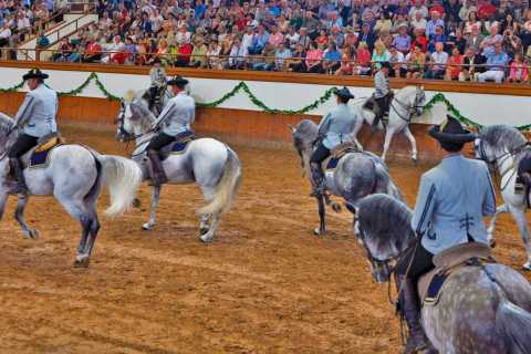 From Seville: Jerez, Cádiz and Andalusian Horses