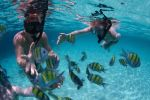 Punta Cana: Private Catamaran Tour with Lunch