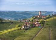 Turin: Privater Tagesausflug in die Weinregion Barolo mit Mittagessen