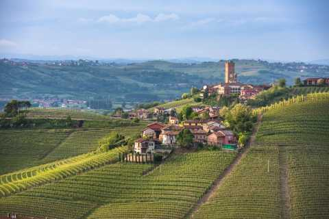 Turin: Private Barolo Wine Region Day Trip with Lunch