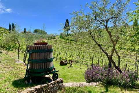 Desde Florencia: tour a las bodegas de Chianti Hills con degustación