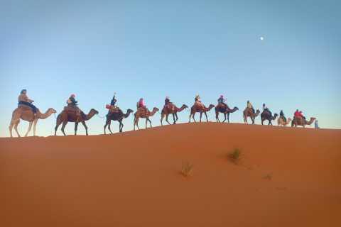 From Marrakech: 3-Day Desert Trip to Merzouga