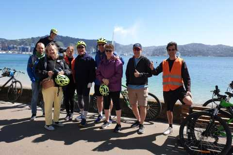 Wellington: Waterfront Private Guided Bike Tour
