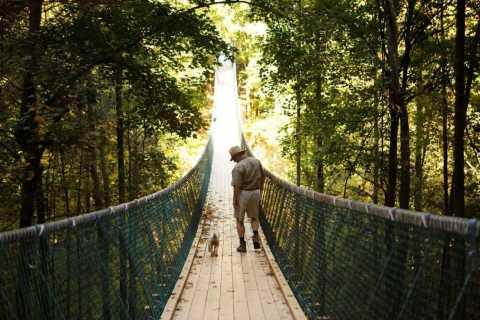 Foxfire Mountain: Hiking & Swinging Bridge Family Adventure