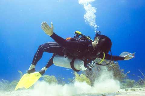 Cozumel: One Tank Scuba Dive and Full Chankanaab Park Access