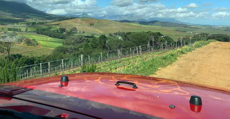 From Cape Town: Stellenbosch Wine Tour