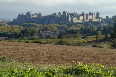 From Toulouse: Private Carcassonne and Albi Sightseeing Tour