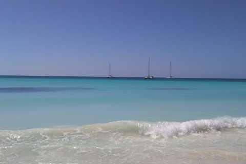 Desde Punta Cana: excursión de día completo a la isla Saona