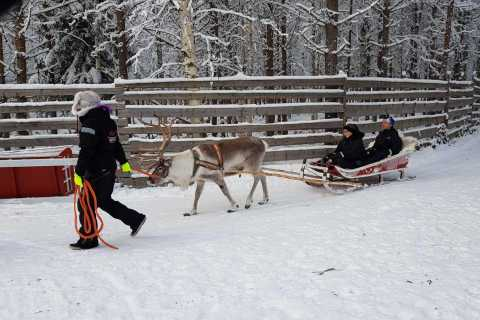 Rovaniemi: Husky Park and Reindeer Farm Combo by Minibus