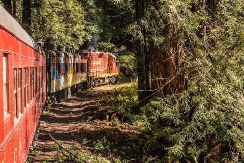 Mendocino County: Skunk Train Pudding Creek Train Ride