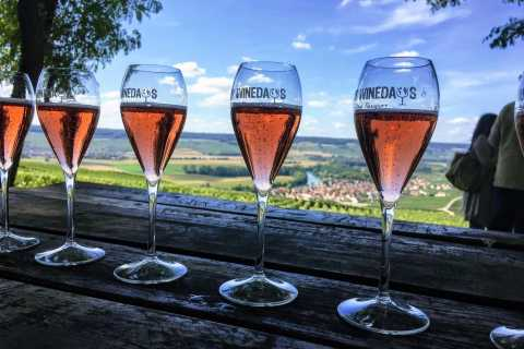 From Paris: Day Trip to Champagne with 8 Tastings & Lunch
