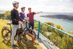 Wellington: Guided Sightseeing Tour by Electric Bike