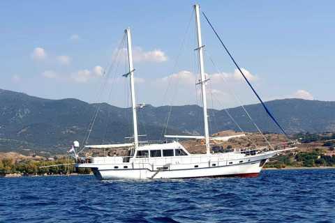 Isole di Delo e Rhenia: crociera di 6 ore da Mykonos