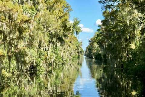 Passeio de Aerobarco nos Pântanos do Sul de Nova Orleans