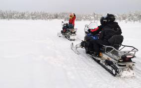 Rovaniemi: 3-Hour Snowmobile Safari in Lapland