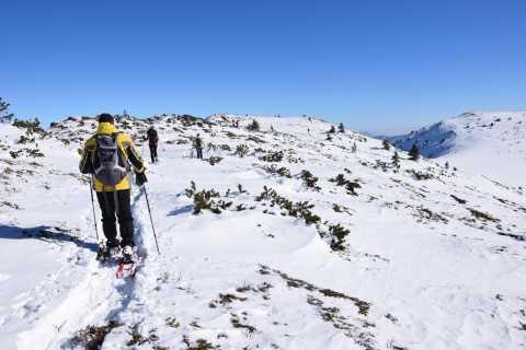From Sofia: Snowshoe Hike on Vitosha Mountain