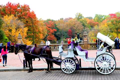 New York City: Central Park Horse-Drawn Carriage Ride