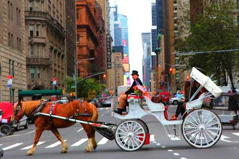 Central Park, Rockefeller e Times Square Horse Carriage Ride