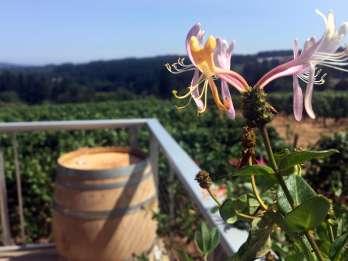 Aus Portland: Willamette Valley Character Wineries