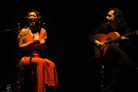 Sevilla: Flamenco Live Show and Guided Walking Tour at Night